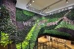 gsky-green-wall-west-elm-tottenham-court-road-london-uk